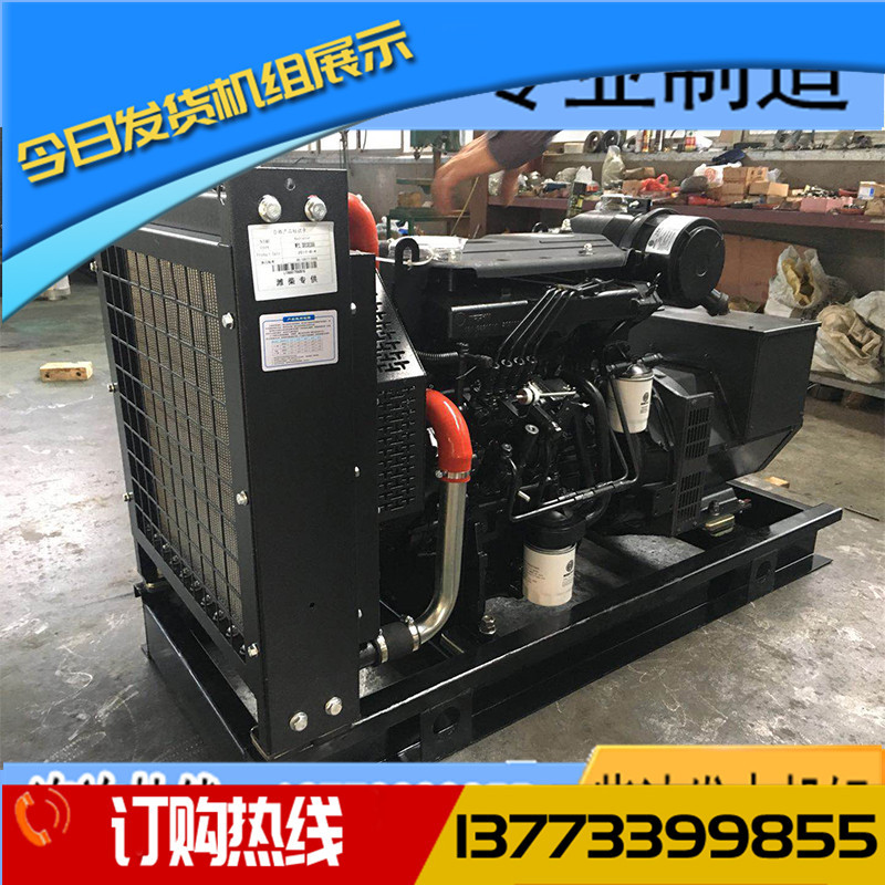 15KW扬柴WP2.1D18E2柴油发电机组